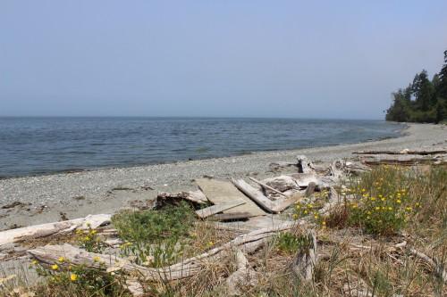 Beach House 7 9 15 053